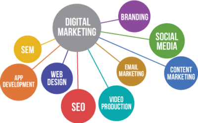 How small and medium businesses should plan Digital Marketing strategies?