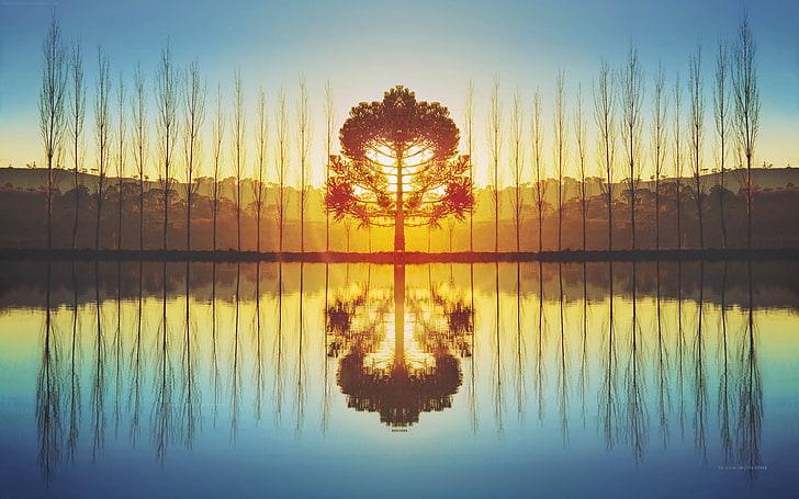 tips for photography - Symmetrical balance