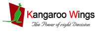 Kangaroo Wings Digital Marketing Institute - Digital marketing courses in Faridabad