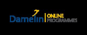 Digital Marketing Courses in Johannesburg - Damelin Online Logo