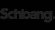 Wordpress Course Online - Placement Partner - Schbang