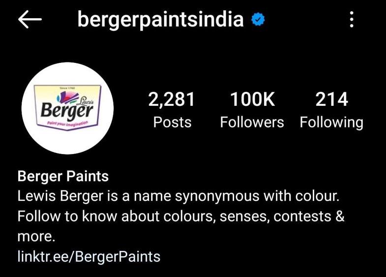 Marketing Strategy of Berger Paints - A Case Study - Social Media Presence - Instagram