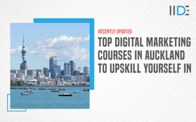 5 Best Digital Marketing Courses in Auckland To Help Transform Your Career