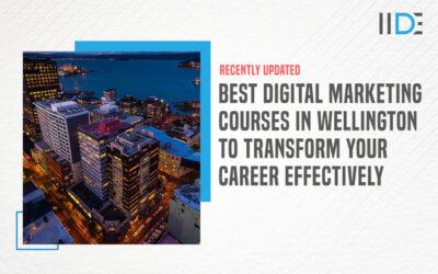 Best 5 Digital Marketing Courses in Wellington To Kickstart Your Career