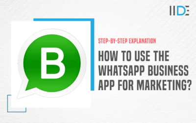 Beginner's Guide on How To Do WhatsApp Marketing – Strategies and Tips Included