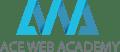 seo courses in hyderabad - ace web academy logo