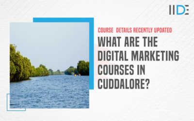 Top 5 Digital Marketing Courses in Cuddalore to Kick-Start Your Career
