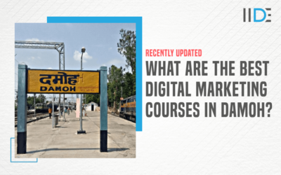 5 Best Digital Marketing Courses in Damoh to Kick-Start Your Career