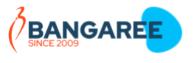 Digital Marketing Services in Ludhiana - Bangaree Logo