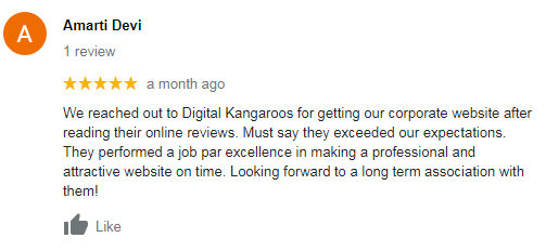 Digital Marketing Services in Ludhiana - Digital Kangaroos Client Review