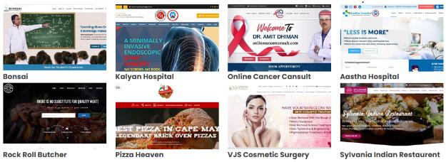 Digital Marketing Services in Ludhiana - Fly Media Tech Clients