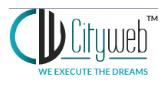 Digital Marketing Services in Nagpur - City Web Logo