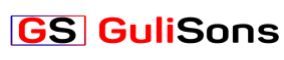 SEO Agencies in Gurgaon - Gulisons Logo