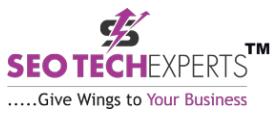 SEO Agencies in Gurgaon - SEO Tech Experts Logo