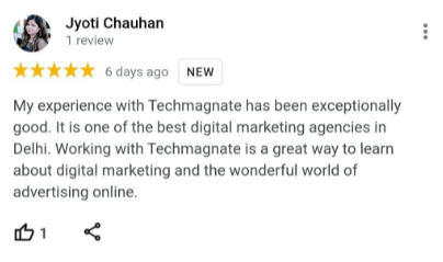 SEO Agencies in Noida - Tech Magnet Client Review