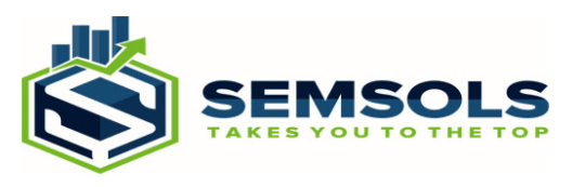 digital marketing courses in BIHAR SHARIF - Semsols Technologies Pvt Ltd logo