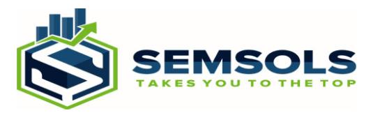 digital marketing courses in CHAPRA - Semsols Technologies Pvt Ltd logo