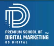digital marketing courses in akola - premium school of digital marketing logo