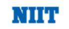 digital marketing courses in bali - niit logo