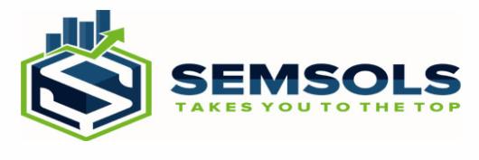 digital marketing courses in bettiah - Semsols Technologies Pvt Ltd logo