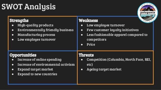Patagonia SWOT Analysis - Patagonia Marketing Strategy