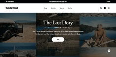Patagonia Website - Patagonia Marketing Strategy
