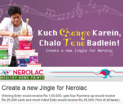 Nerolac Paints Marketing Campaign - Marketing Strategy of Nerolac Paints | IIDE