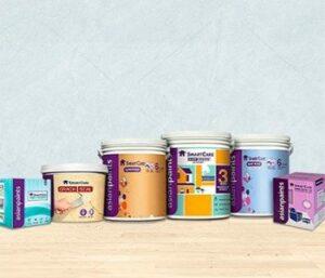 Asian Paints Buckets | Business Model Of Asian Paints | IIDE